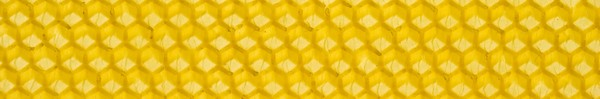 Honeycomb bandeau