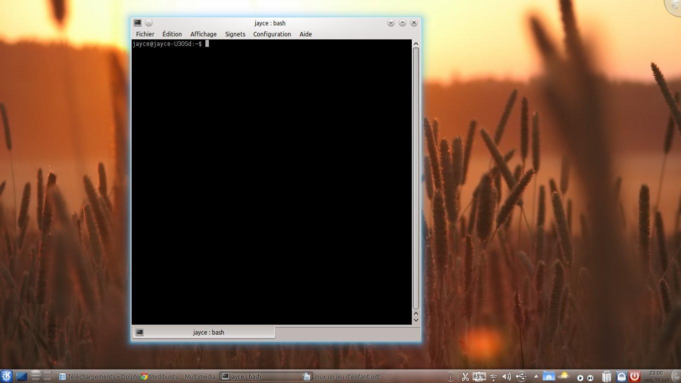 terminal Linux : un jeu denfant  !