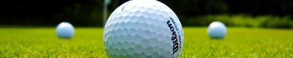 green golf HTC Golf succède au WildFire et Wildfire S