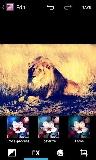 retouche lion gallery ics1 Gallery ICS disponible pour tous...