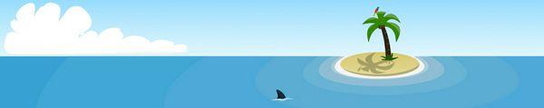 bandeau requin mer soleil perroquet