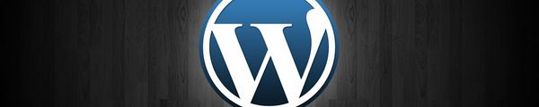 wordpress Wordpress 3.4 en 5 points