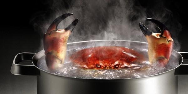 cuisine crabe