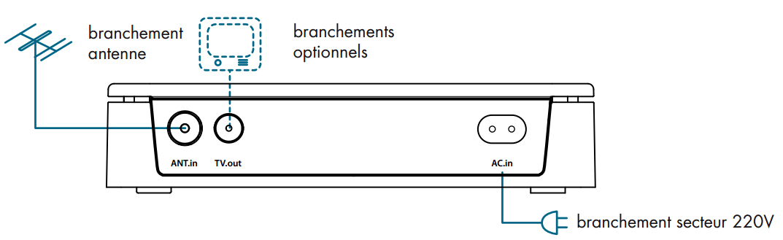 base_branche