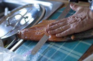 saumon-tamron
