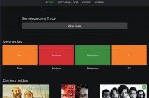 interface-web-emby